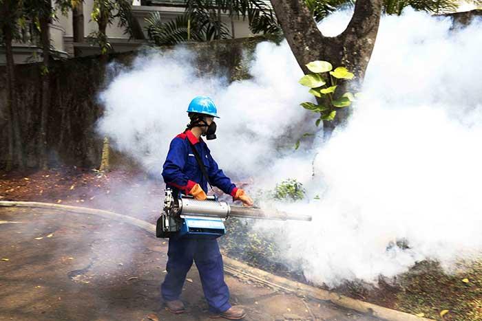 Berikut Faktor-faktor Yang Menentukan Harga Fogging Nyamuk