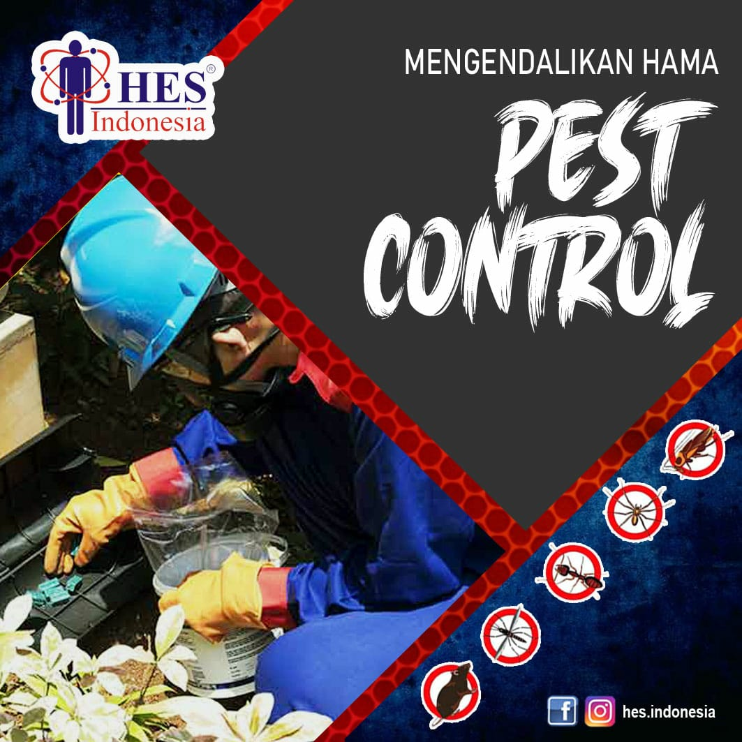Pest Control Dan Pengendalian Hama Terbaik Di Jakarta