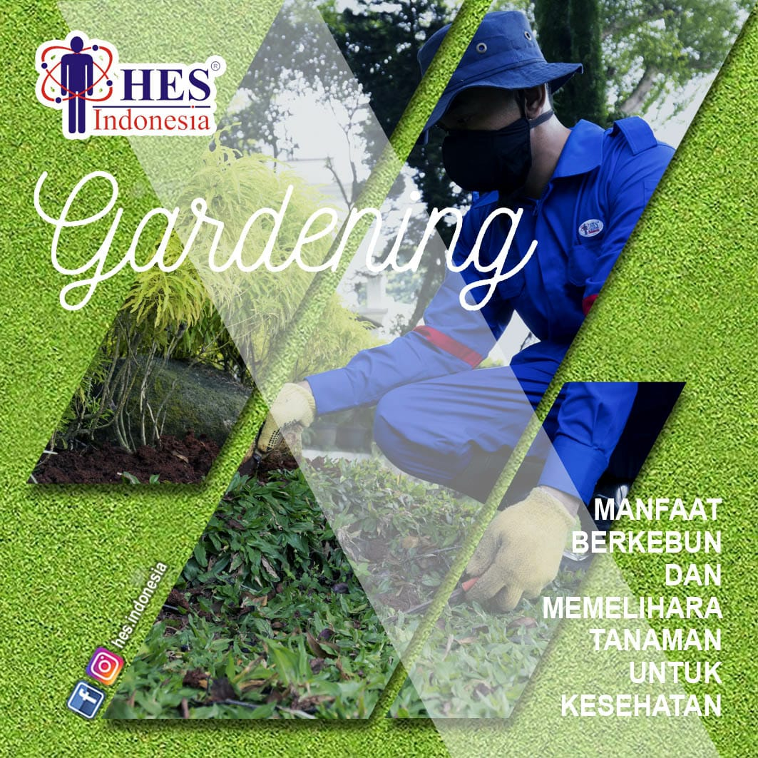 Jasa Pertamanan Terbaik Indonesia (Gardening Service)